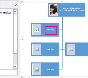 Sơ đồ tổ chức ảnh SmartArt với hộp trên sơ đồ tổ chức được tô sáng để hiển thị vị trí mà bạn có thể nhập văn bản