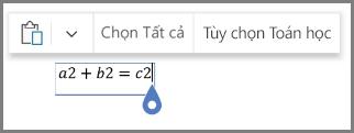 Toán học Hiển thị tùy chọn cho các phương trình