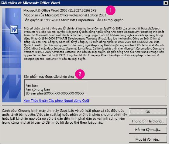 Cửa sổ Giới thiệu về Microsoft Office Word 2003
