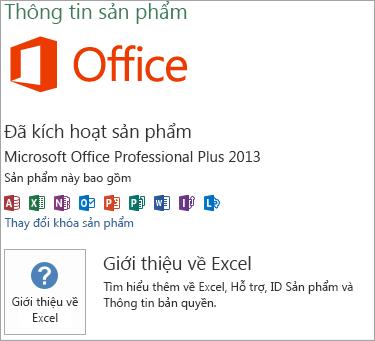Cài đặt Excel MSI