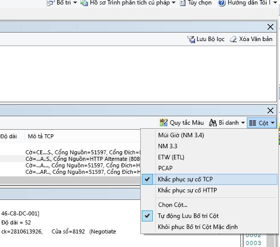 Nơi để tìm menu thả xuống Cột cho tùy chọn Khắc phục sự cố TCP (ở phía trên cùng của Tóm tắt Khung).