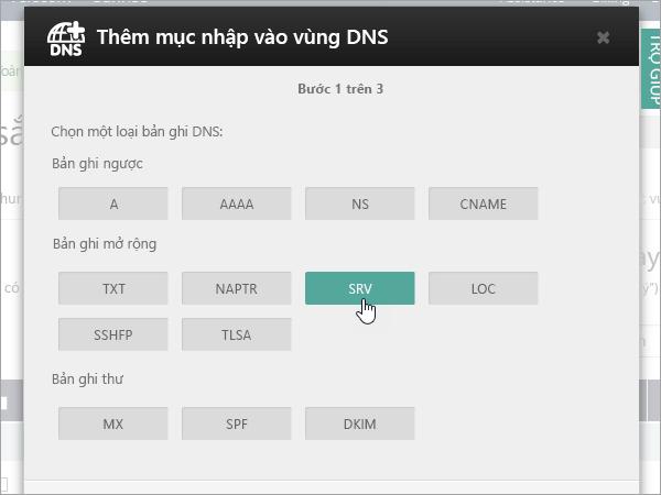 OVH chọn type_C3_2017521125535 bản ghi SRV