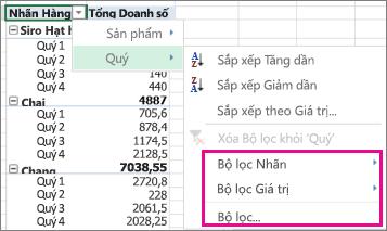 Các tùy chọn lọc cho dữ liệu PivotTable