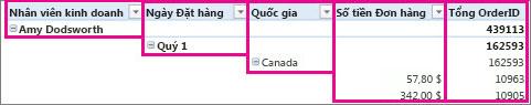 Dữ liệu PivotTable dưới dạng biểu mẫu dàn bài