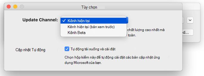 Hình ảnh của máy Mac Microsoft AutoUpdate-> tùy chọn cửa sổ hiển thị lựa chọn kênh Cập Nhật.