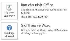 Khi được cài đặt Office bằng cách dùng công nghệ Click-to-Run, ứng dụng và cập nhật thông tin trông như thế này.