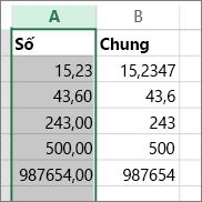 mẫu hiển thị các số với các định dạng khác nhau như định dạng Số và định dạng Chung.