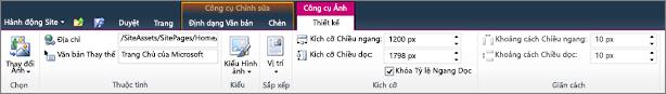 Công cụ ảnh tab cho phép bạn thiết lập kích thước, kiểu, vị trí và văn bản thay thế trên hình ảnh.