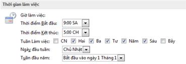Phần thời gian làm việc trong hộp thoại Tùy chọn Outlook