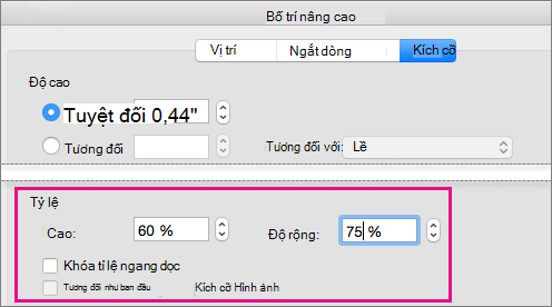 Trên tab kích cỡ trong hộp bố trí nâng cao, các tùy chọn quy mô sẽ được tô sáng.