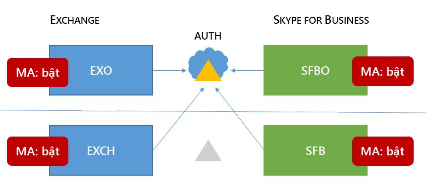 Một 6 hỗn hợp Skype for business HMA cấu trúc có MA trong tất cả bốn vị trí có thể xảy ra.