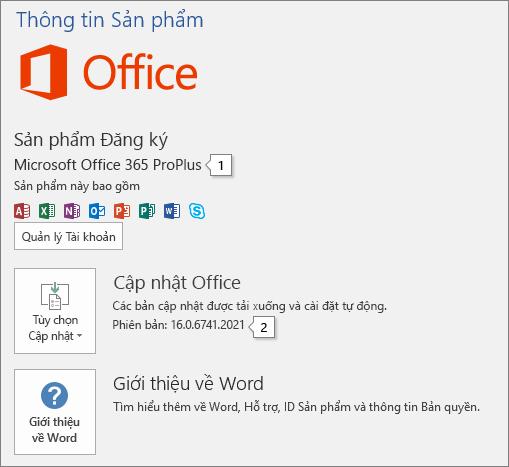 Ảnh chụp màn hình trang Tài khoản hiển thị tên sản phẩm Office và số phiên bản đầy đủ