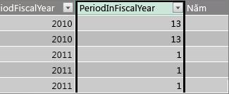 Cột Period trong năm tài chính