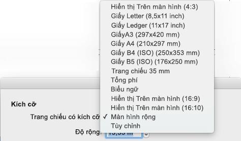 Có một số tùy chọn kích cỡ trang chiếu được định sẵn trong hộp thoại thiết lập trang