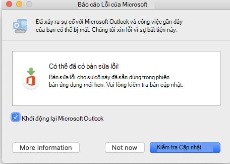 Cửa sổ báo cáo lỗi Microsoft.