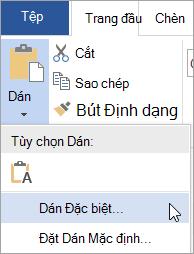 Chọn dán đặc biệt trên menu dán
