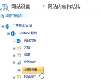 在网站管理器窗口中,单击调查快速启动栏上