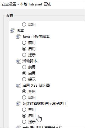 显示编程允许剪贴板访问的自定义级别的设置