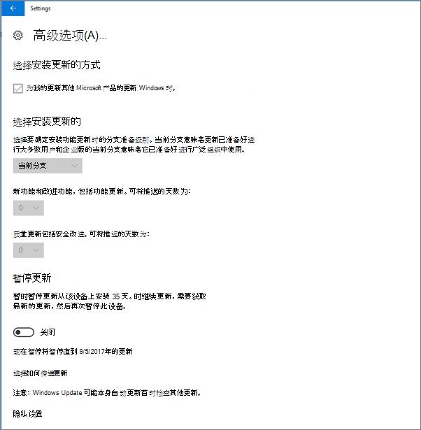 Windows 高级更新选项是所有呈灰色显示。