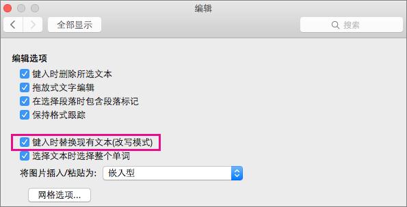"""在""""Word 首选项编辑""""对话框中突出显示了""""输入时替换现有文本(改写模式)""""。"""