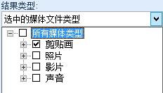 """在""""结果应为""""框下方,选择想要包括在搜索结果中的媒体类型"""