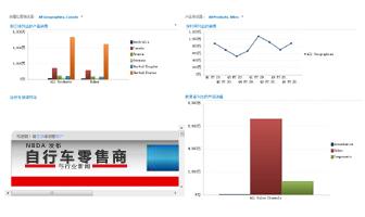 应用了 2 个筛选器的 PerformancePoint 仪表板