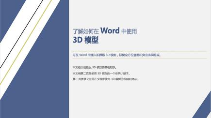 3D Word 模板封面的屏幕截图