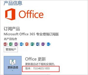 Office 更新中的 Office 版本