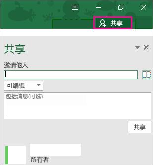 "Excel 2016 for Windows 中的""共享""窗格"