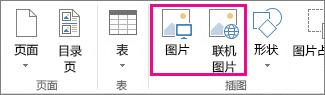 "Publisher 中""插入""菜单上""插入图片""选项的屏幕截图。"