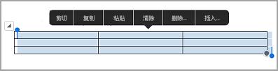 iPad 表格命令栏