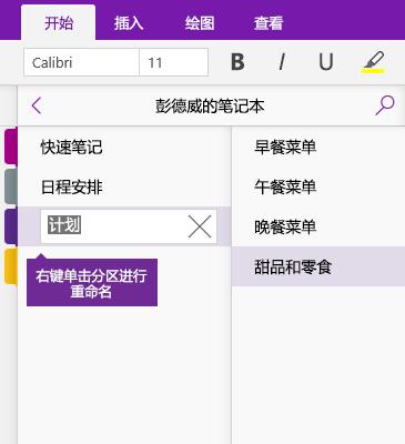OneNote 中进行重命名的分区的屏幕截图