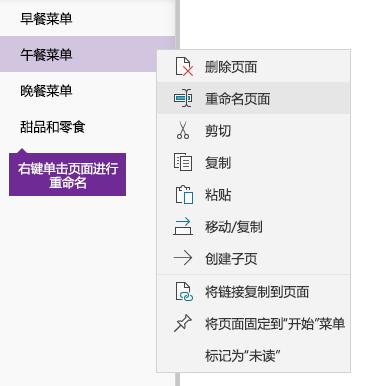 OneNote 中进行重命名的页面的屏幕截图