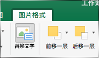"""Excel for Mac 功能区上的图像的 """"替换文字"""" 按钮"""