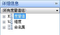 """显示""""量值""""、""""维度""""和""""命名的集""""的""""详细信息""""窗格的屏幕截图"""