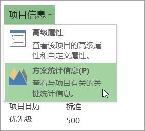 项目信息选项