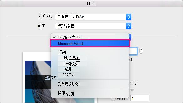 """在""""打印""""对话框中,选择""""Microsoft Word""""以配置更多打印设置。"""