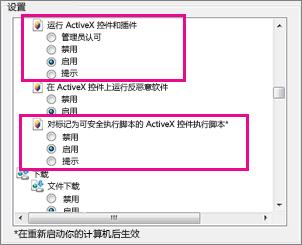 允许 ActiveX 控件在 Internet Explorer 中加载和运行