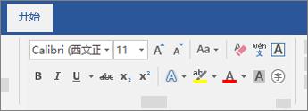"Word 功能区上的""文本格式""选项"