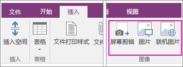 "OneNote 2016 中的""插入图片""选项的屏幕截图。"