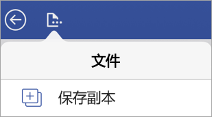 "Visio Viewer for iPad 中的""保存文件副本""选项"