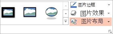 显示格式选项卡上的图片版式按钮