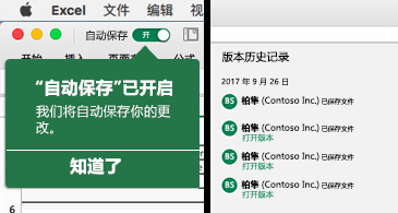 """左侧显示""""自动保存""""气泡,右侧显示版本历史记录列表的 Excel 功能区"""