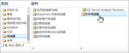 选择文本筛选器 web 部件
