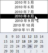 具有月份选择器的日期选择区