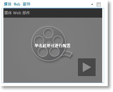 新插入的媒体 Web 部件