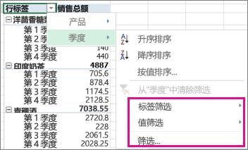 数据透视表数据的筛选选项