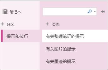 OneNote Online 中的分区和页