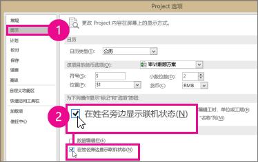 "Project 选项,""显示""选项卡"