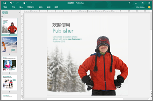 使用 Publisher 创建专业新闻稿、小册子和其他出版物